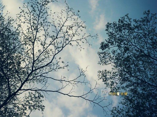 170227-凹仔底公園.對面PhotoGrid_1488646015218