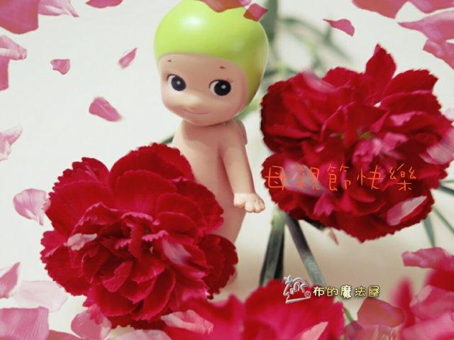 170509-康乃馨+sony angel+特效.PhotoGrid_1494732407114 複製