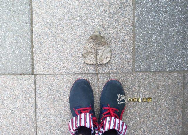 """#布的魔法屋--找到一片枯掉的葉子.我想到小時候那一篇英文短文.""""有個沮喪的病人覺得.葉子掉光.他就會死了.""""小時候我心裡想.到底這個人想什麼東西.這樣想.我英文要背很久.(photo in # 成功大學 #成大 #NationalChengKungUniversity #後火車站 #台南市 #Tainan)(post by #高雄 #Kaohsiung #台灣 #Taiwan #布的魔法屋 #布的魔法屋拼布 #拼布 #patchwork@quilterdiycandy)180113-台南 後火車站 成功大學.IMG_0880 - 複製"""